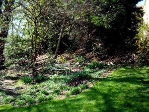 Backyard-bench[1]